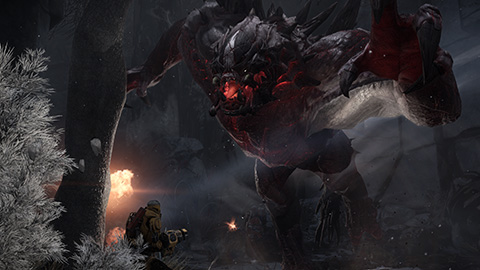 accessing dlc other content in evolve 2k support